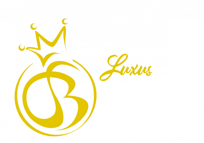luxus_saunabussi_logo_vaaka_rivitetty_negateksti